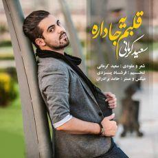 متن آهنگ قلبم یه جا داره از سعید کرمانی + پخش آنلاین